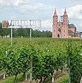 Perverse Mönche glauben, dass der Wein hier so gut munde, wie die Muttermilch der Jungfrau. - panoramio.jpg