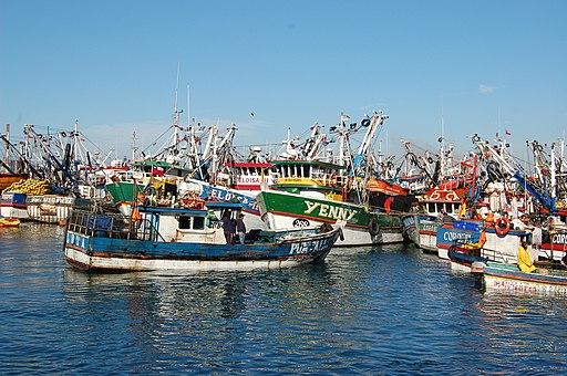Pescadores de Talcahuano2