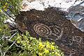 Petroglyphs-south-mountain.jpg