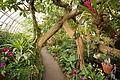 Phipps Conservatory 10.jpg