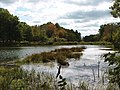 Photo of the Week - Peverly Pond (NH) (6343703485).jpg