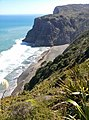 Piha 0772, New Zealand - panoramio (23).jpg
