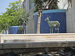 PikiWiki Israel 32128 Ibex sculpture in Dimona.JPG