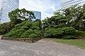 Pinie im Hamarikyū-Park.jpg