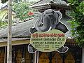 Pinnawala Elephant Orphanage 38.JPG