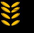 Pinus männlicher Blütenzapfen.png