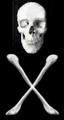 Pirate-symbol.png