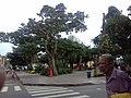Plaza Mariño de Turmero desde el cruce de las calles Bolívar Y Panteón - panoramio.jpg