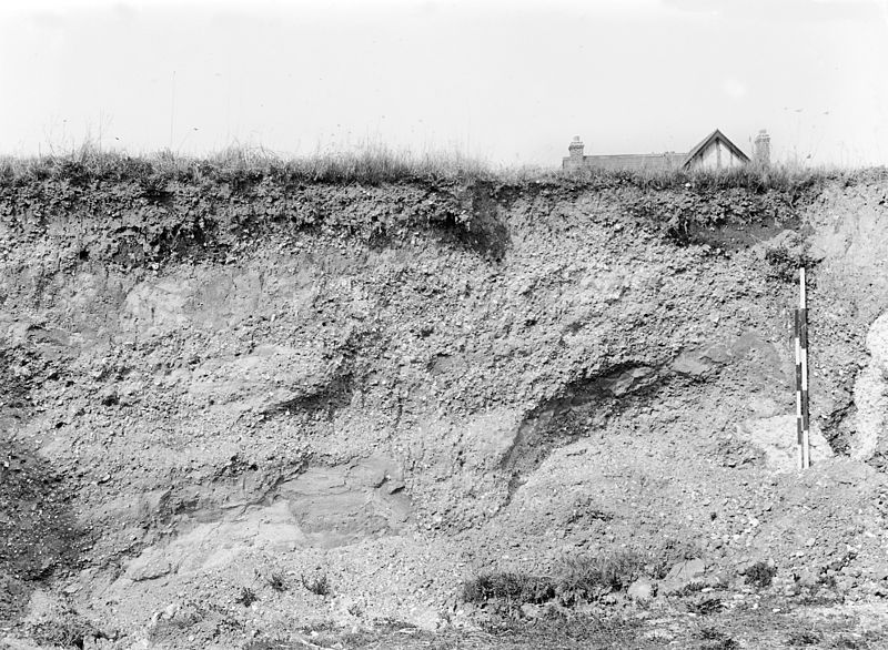 File:Pleistocene deposits of the Thames valley. Wellcome M0014917.jpg