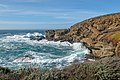 Point Lobos State Natural Reserve 1 18 19 (31951596417).jpg