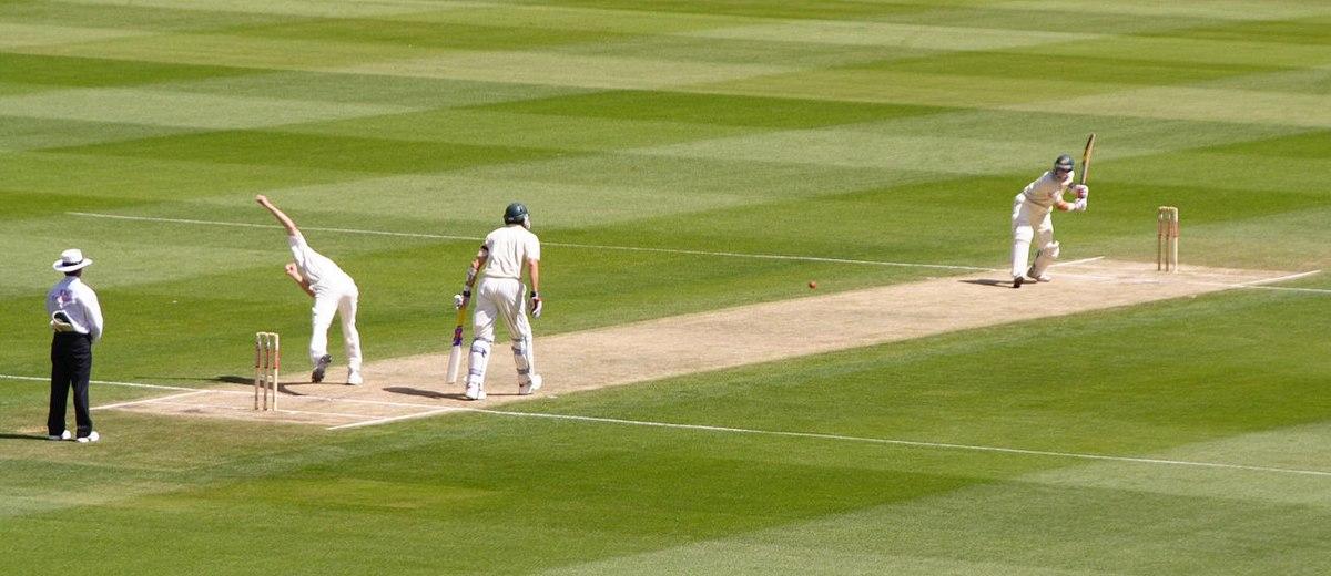 Cricket Deutsch