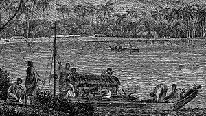 Tahitian Dog - Dog in a canoe depicted in John Webber's A view of Huaheine, from the Third voyage of James Cook