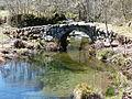 Ponte da Dorna (4515499591).jpg