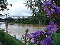 Ponte de Ferro - panoramio.jpg
