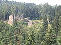 Poresin Castle CZ overall view from N.jpg