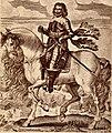 Portrait of the Earl of Essex.jpg