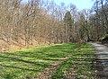 Prague Kunraticky Forest Meadow.jpg