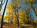 Praha, Smíchov, Kinského zahrada, podzim III.jpg