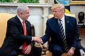 President Trump Meets with Israeli Prime Minister Benjamin Netanyahu (49452465091).jpg