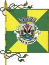 Flag of Montijo