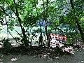 Puerto Princesa, Palawan, Philippines - panoramio (15).jpg