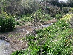 Río de Anzola.jpg