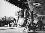 RAAF Hudson.jpg