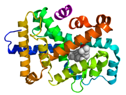 Ligand-binding domain (LBD)