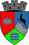 Coat of arms of Bicaz