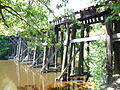 Rail bridge over the Charles River, Needham MA.jpg