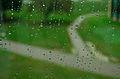RaindropsOnWindow.jpg
