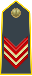 Rank insignia of appuntato scelto of the Guardia di Finanza.svg