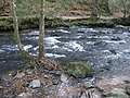 Rapids, on the River Teign - geograph.org.uk - 1095924.jpg