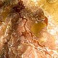 Reef Rock 2.jpg