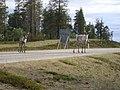 Reindeer - panoramio.jpg