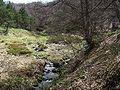 Reka Čemerčica.JPG