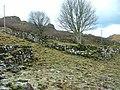 Remains of settlement at Balnaknock - geograph.org.uk - 1106803.jpg