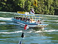 Rheinfall-08-26-2007-21.jpg