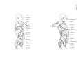 Richer - Anatomie artistique, 2 p. 117.png