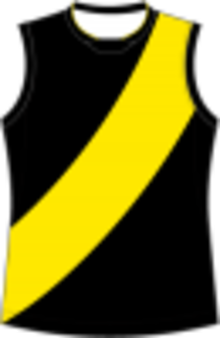 90366c4a1a032 Bendigo Football League - Image  Richmond Football Guernsey