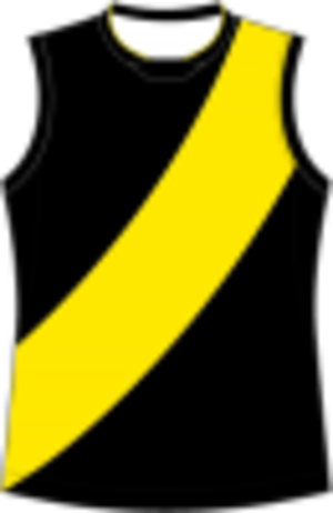 Bendigo Football League - Image: Richmond Football Guernsey