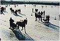 Ringsteek- en arrensledenwedstrijden op ijsbaan Nova Zembla in Spaarndam. NL-HlmNHA 54036293.JPG