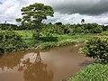 Rio Boa Vista, Ouro Preto do Oeste, Rondônia.jpg