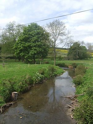 River Corve - River Corve - upstream at Beambridge