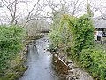 River Erme, Ivybridge - geograph.org.uk - 1759992.jpg