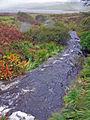 River Roskhill - geograph.org.uk - 1018115.jpg