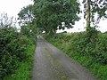 Road at Craig - geograph.org.uk - 953783.jpg