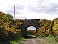 Road bridge (to Stoupe Bank) over the old Scarborough to Whitby Railway - geograph.org.uk - 8724.jpg