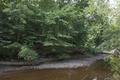 Rock Creek Park, NW, Washington, D.C LCCN2010641460.tif