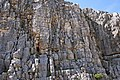 Rock Outcrop at Mont Ventoux in France 1.jpg